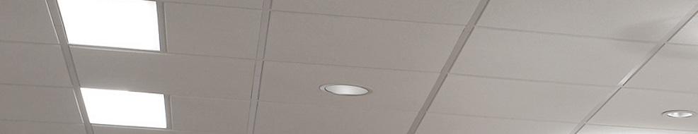 Lutron Lighting Fixtures