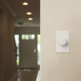 White Dalia Dimmer on a wall