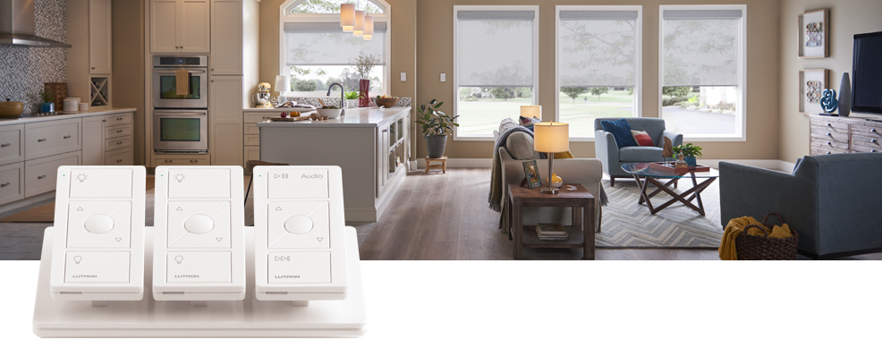 Lutron Pico Wireless Control Overview