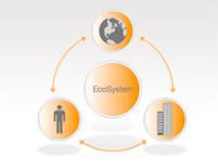 ecosystem lifecycle chart